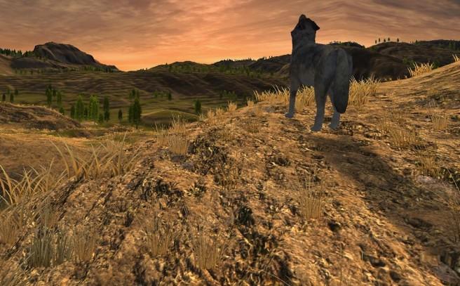 WolfQuest2